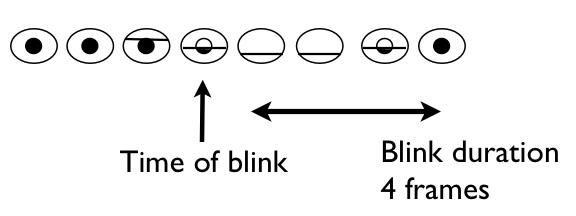Blinking Study: Blinks
